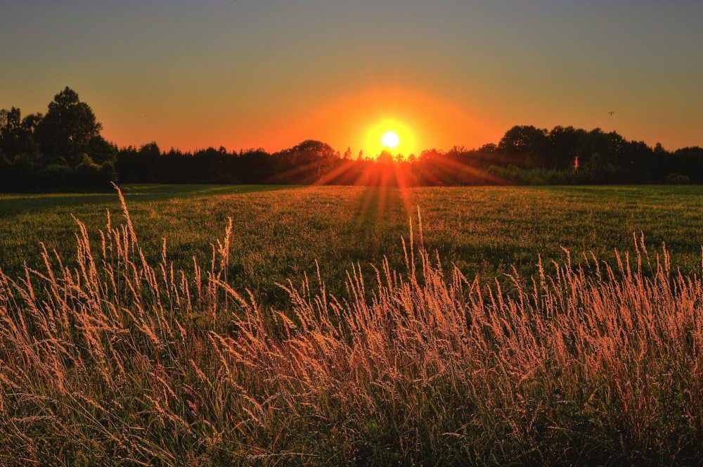 beautiful-beautiful-view-countryside-1237119